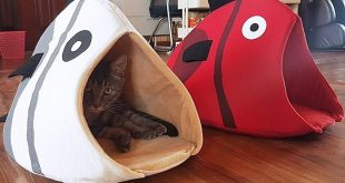 Fish Shaped Cave Cat Bed
